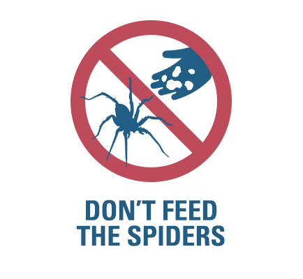 dont-feed-spiders